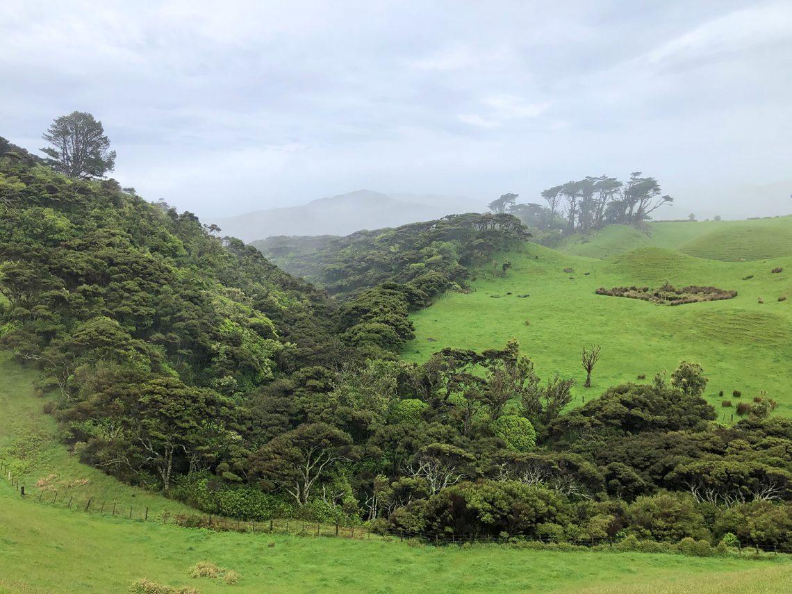 Weer in Nieuw-Zeeland