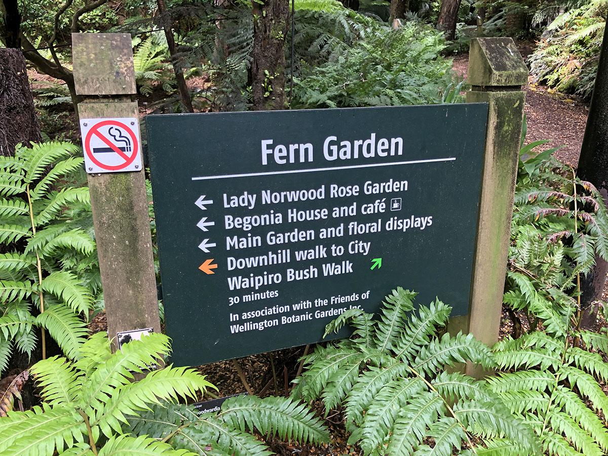 De Fern Garden in de Botanische tuinen van Wellington
