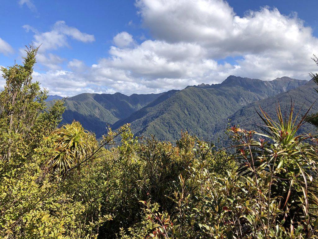 Nieuw-Zeeland natuur: Kahurangi National Park