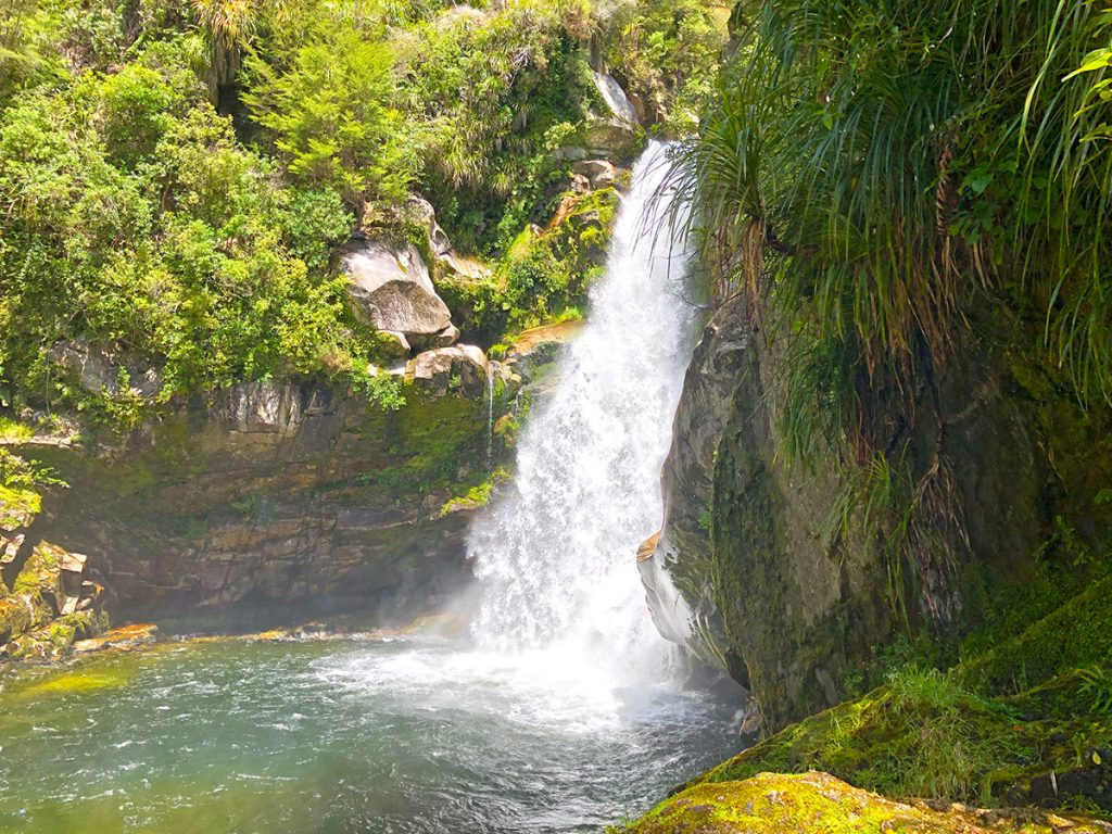 Wainui Falls wandelingen in Abel Tasman National Park