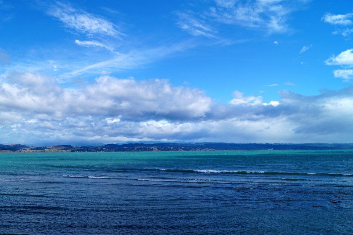 Napier, Nieuw-Zeeland