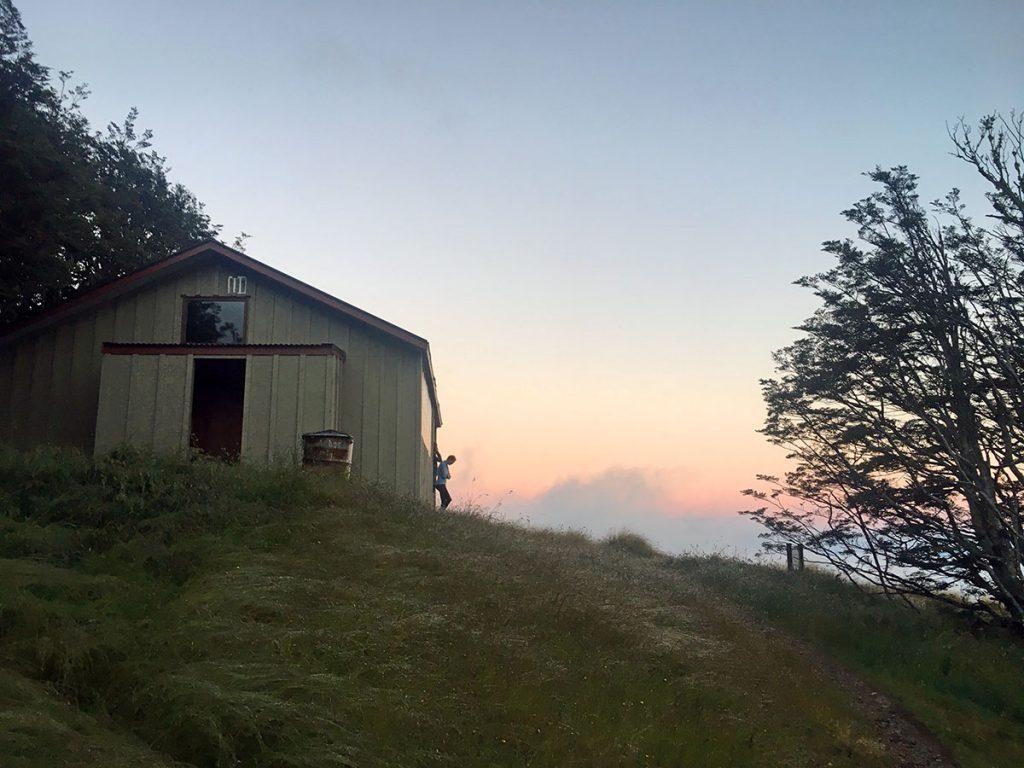 Hoogtepunten Nieuw-Zeeland: wakker worden bij de Bushline Hut