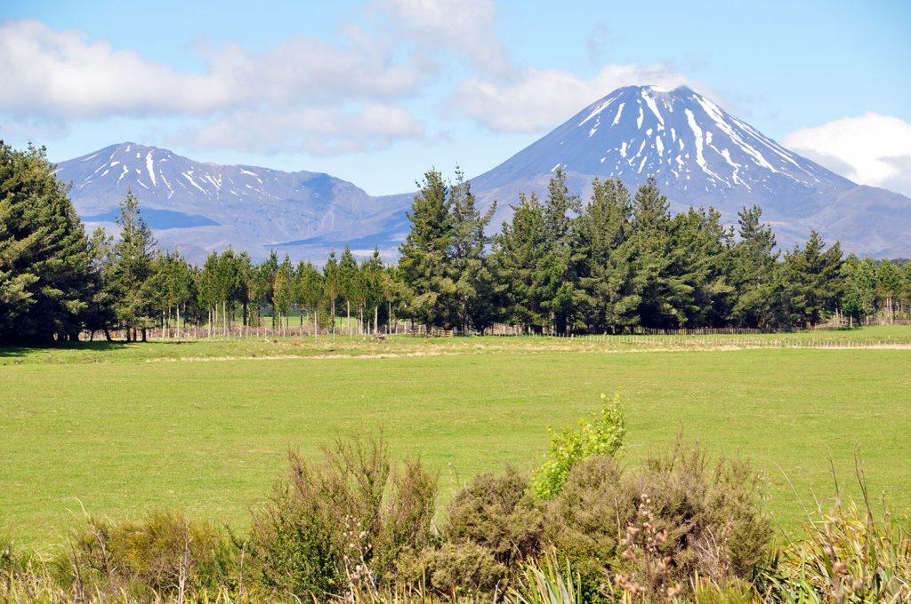 Mount Ngauruhoe Nieuw-Zeeland
