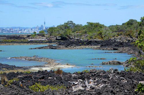 Rangitoto Island in Nieuw-Zeeland