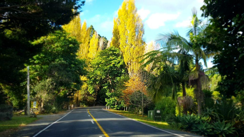 Nieuw-zeeland in het najaar nieuw-zeeland in de herfst beste reistijd nieuw zeeland